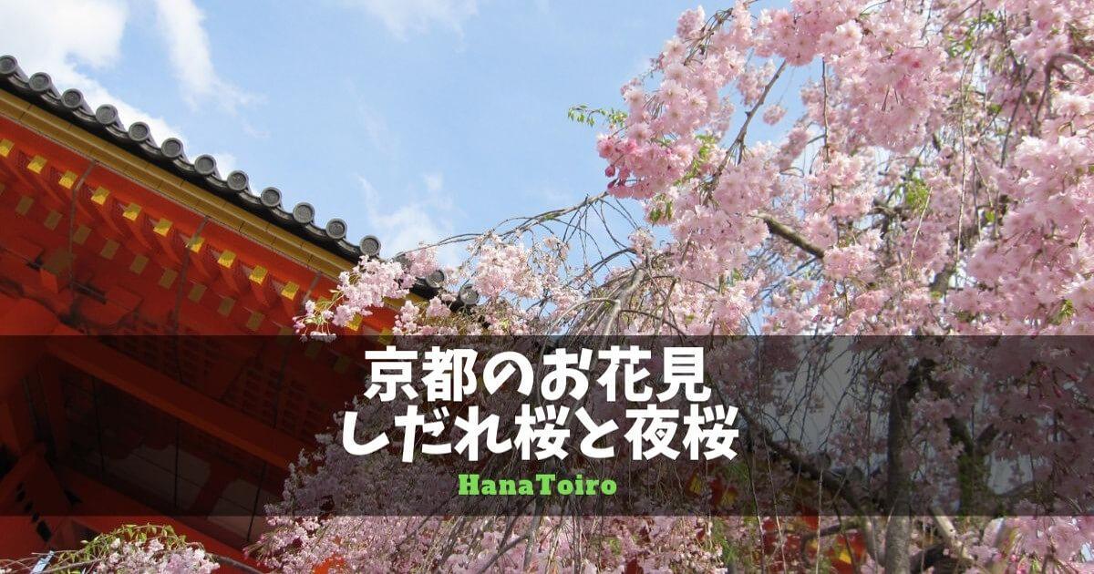 京都のお花見・しだれ桜と夜桜