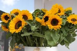 結婚式の花選び・夏の花の色と種類