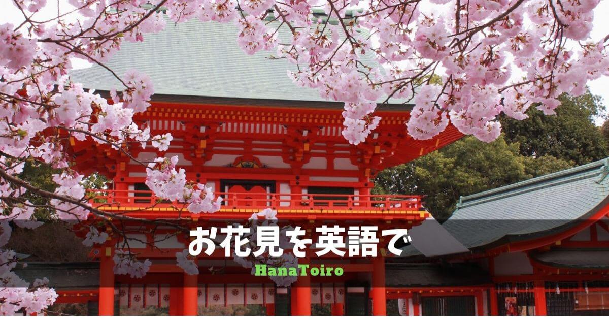 お花見を英語で・外国人に日本文化を