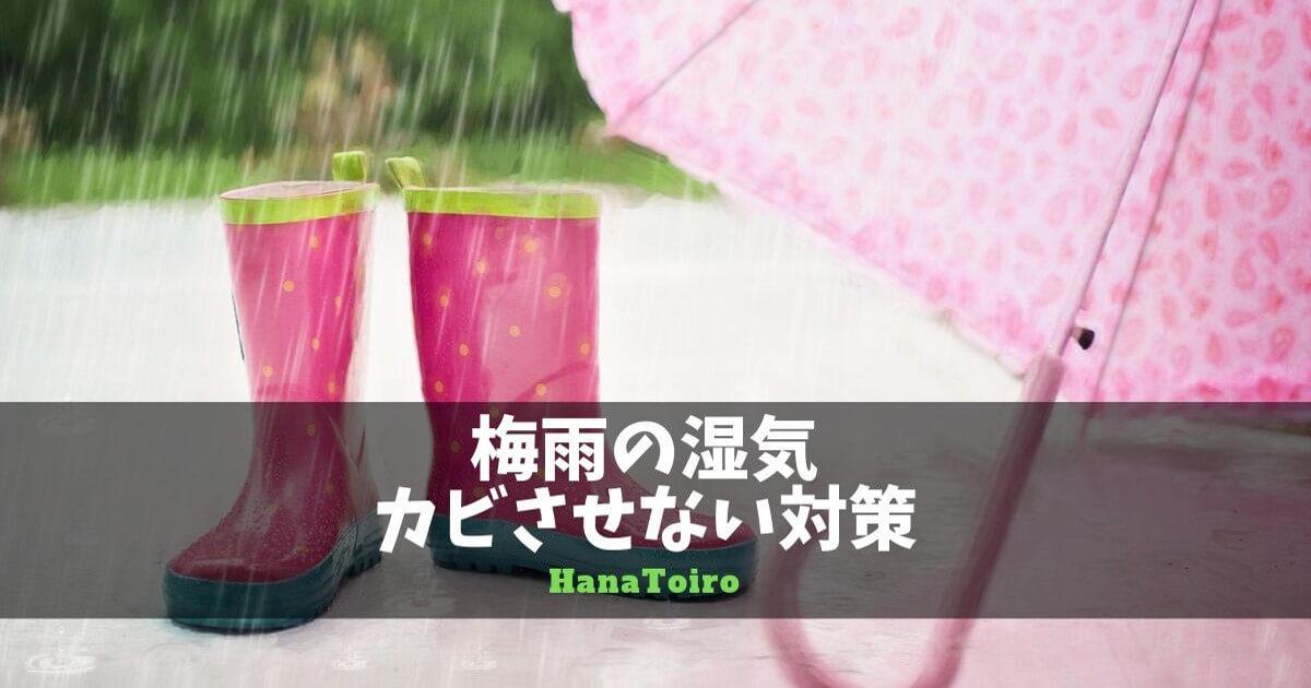梅雨のカビ対策