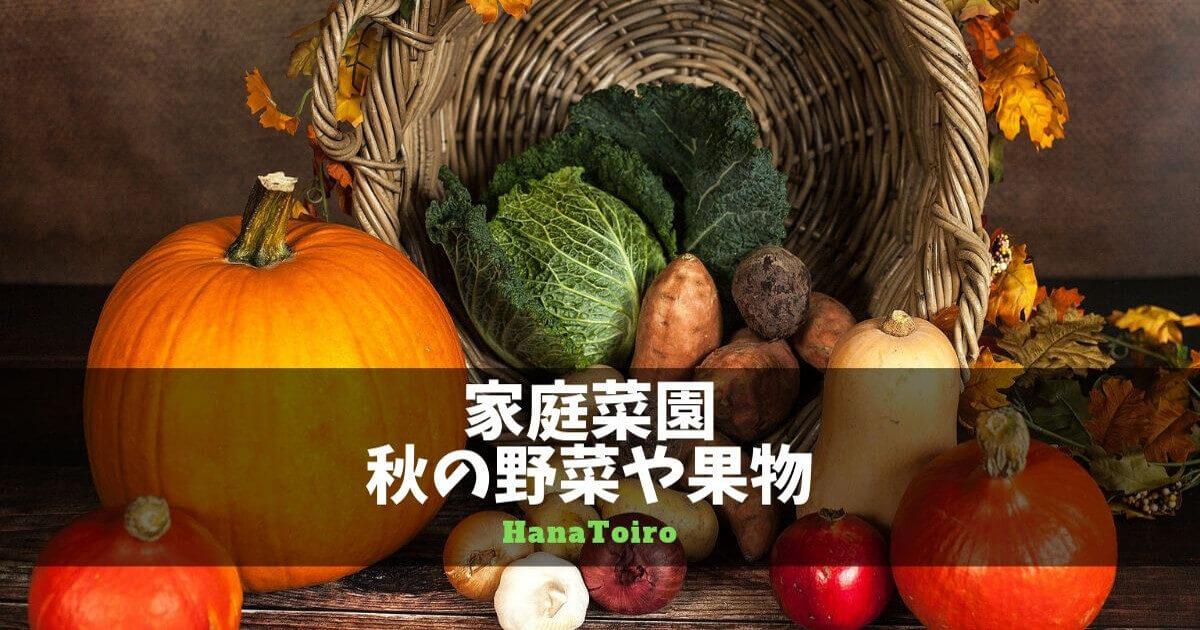 秋の野菜や果物・家庭菜園