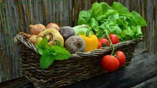 初心者でも栽培できる冬野菜4選と収穫して食べたい美味しいレシピ