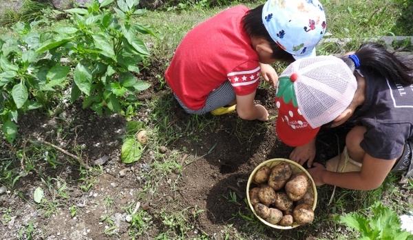 植える に 2 野菜 月