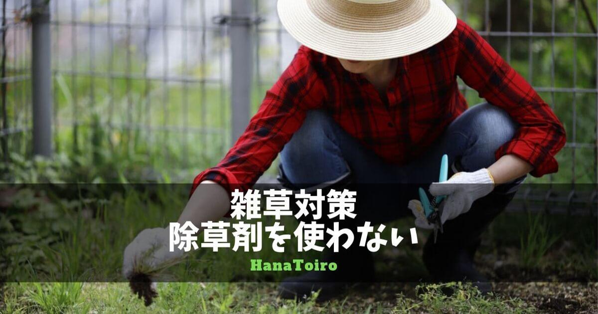 雑草対策・除草剤を使わない